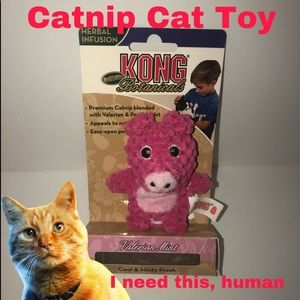 Cat Nip Toy Kong Brand Stuffed Pig